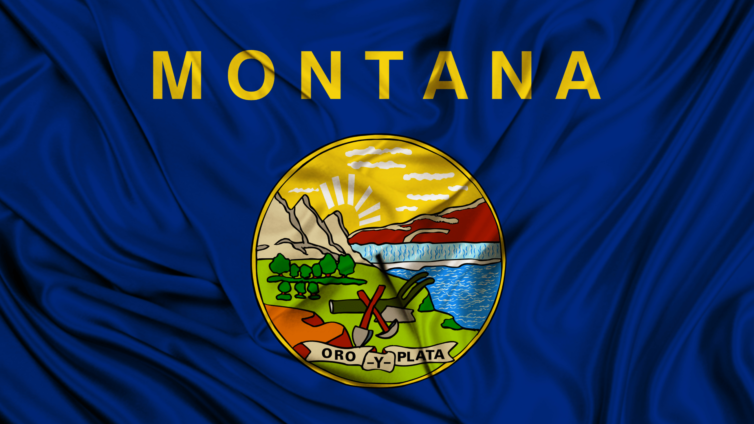 About the Montana State Flag